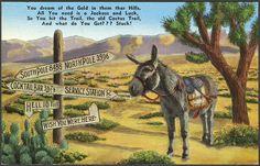 Viewliner Ltd.: Us Desert Folks