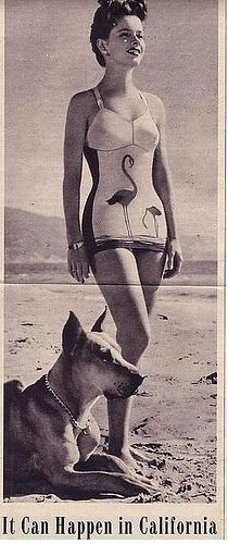vintage swimsuit with flamingo's