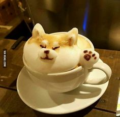 The Most Satisfying Cappuccino Latte Art - Coffee Brilliant Shiba Inu, Coffee Latte Art, Coffee Shop, Coffee Coffee, Coffee Lovers, Coffee Cups, Bar Kunst, Cappuccino Machine, Image Clipart