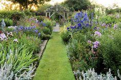 Wollerton Old Hall Garden borders Path Design, Garden Design, Design Ideas, Clematis, Visit Devon, Landscape Curbing, Little Gardens, Garden Park, Garden Borders