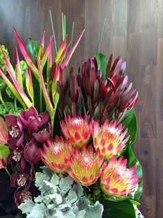 Urban Flower: Australian Native Flower Arrangements For Church Event in Baulkham Hills Australian Wildflowers, Australian Native Flowers, Australian Plants, Tropical Flowers, Fresh Flowers, Beautiful Flowers, Purple Flowers, Potted Flowers, Wax Flowers