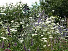 Trädgård i Torslanda: Min favoritrabatt just nu - sista juli