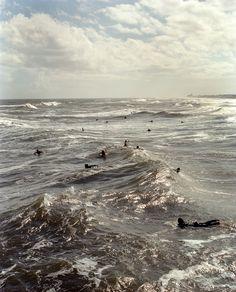 Dylan Johnston Photography - .