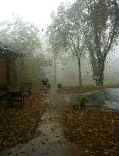 Image result for fall rainy day