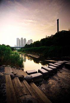 Yangjaecheon stream, Seoul