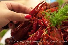 Finnish crayfish  Also, Nail polish to match the main course! (Essie)  #kräftskiva #kräftor #rapujuhlat