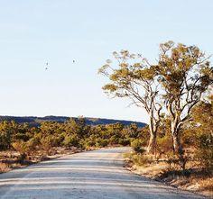 Last afternoon in Quorn, SA #flindersranges #southaustralia #seeaustralia