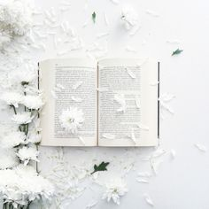 Winter *❄️~*.Wishes & Dreams.*~❄️* Snow Blossoms, Petals, and Beloved Books