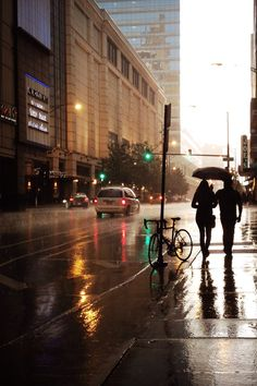 Rainfall New York Richard Pilon (website)