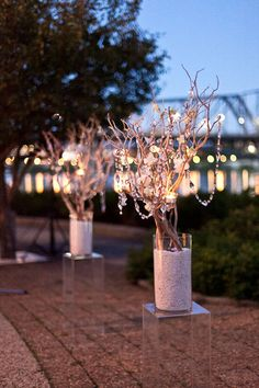 Branch centerpiece idea. But just not as crowded. Some tea lights and pearls instead of the crystals