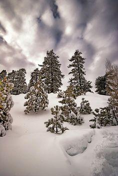 Snow at Big Bear Lake California via flickr