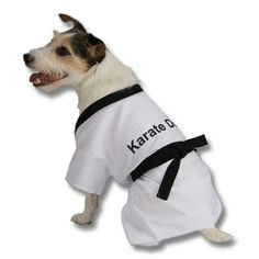 Is your dog a member of the family?  Do you take them everywhere?  And are they too cute not to dress up?  If the answer is yes then don't let a family member go around naked this Halloween!  Get your four legged friend a karate dog costume so he or she will feel like they belong (and help the kids get some extra candy too!)  Our doggie outfits come in several sizes, include the shirt and the belt, and are 100% polyester so your best friend will be comfy in their new clothes.  Happy ...