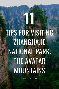 Planning your trip to China? Make sure you add Zhangjiajie to the list! Here's Planning your trip to China? Make sure you add Zhangjiajie to the list! Here's 11 tips for visiting Zhangjiajie National Park – The Avatar Mountains – A Walsh Life Zhangjiajie, China Travel Guide, Asia Travel, Travel Abroad, Cruise Travel, Thailand Travel, Solo Travel, Cool Places To Visit, Places To Travel