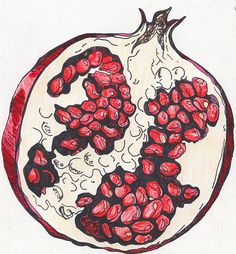 One of the symbols that represents Juno is the pomegranate. It is supposed to represent marital love and fruitfulness. Kunst Inspo, Art Inspo, Pomegranate Art, Pomegranate Drawing, Pomegranate Tattoo, Art Aquarelle, Watercolor Art, Art And Illustration, Grenade