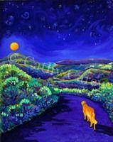 ": Golden Moonwalk, 16"" x 20"", Oil by Cathy Carey ©2014"