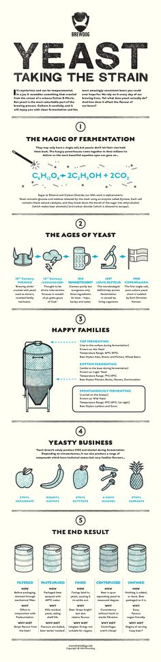 **INFOGRAPHIC** Ever pondered over the brewing enigma that is yeast? Well ponder no more!