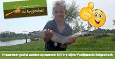 Er kan weer gevist worden op meerval bij Forelvijver Paviljoen de Ruigenhoek in Utrecht. Zelfde prijzen en gewicht uitzet als bij het forelvissen. Twee sessies per dag, start om 9:00 uur en om 13:00 uur. Kom op tijd!!