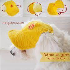 Résultats de recherche d'images pour «moldes de ropa para perros»