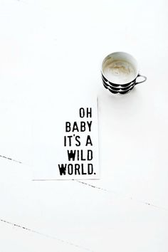 oh baby it's a wild world - Cat Stevens Words Quotes, Wise Words, Qoutes, Word Up, Inspire Me, Motto, Decir No, Quotes To Live By, Quotations