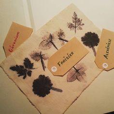 Mes essais d'impressions végétales.  #feuilles #leaves #impressions #fleurs #flowers #flowleaf2015 #geranium #fraisier #alchemille #dyeing #marieclaireidées #mondiyamoi #nature #cestmoiquilaifait