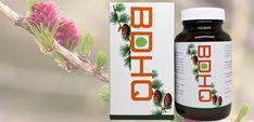 BDHQ - cel mai puternic antioxidant pentru o sănătate impecabilă Mai, Water Bottle, Drinks, Food, Drinking, Beverages, Water Flask, Water Bottles, Drink