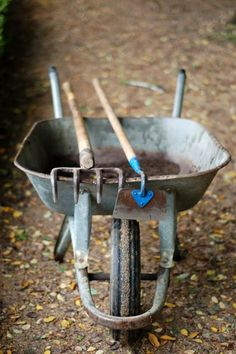wheelbarrow and garden tools