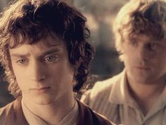 """""""Your right Sam, we did what we set out to do. The Ring will be safe in Rivendell I am ready to go home."""""""