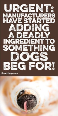 Urgent: Manufacturers Have Started Adding A Deadly Ingredient To Something Dogs BEG For!