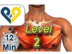 Chest Workout Level 2 from passion4profession