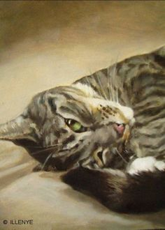 ILLENYE Oil Painting CUSTOM CAT PORTRAIT  5x7 in. #Realism