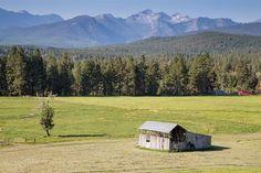 Summertime at Lost Horse Creek Hamilton MT