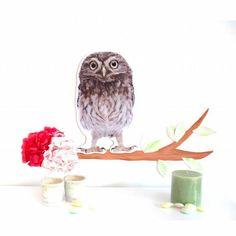 Oder solls doch die Eule sein? Wandbild Frl Gelb Bird, Animals, Owls, Wall Murals, Animaux, Birds, Animal, Animales, Animais