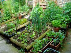 El cultivo en camas elevadas se ha extendido, sobre todo en jardínes nuevos, por la facilidad en controlar la calidad de la tierra. Como sabemos en las grandes urbanizaciones se mueven enormes cant…