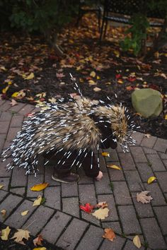 Porcupine. Halloween. Porcupine costume. Homemade costume. Fur. Coffee stirs. White electrical tape.