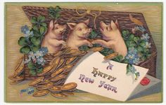 Pigs Money Clovers in Basket Happy New Year Embossed Postcard | eBay
