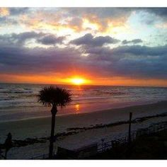 Yvonne shared her favorite Hotels's in Daytona Beach