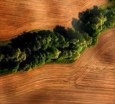 #Erde #Boden #HamburgEnergie #Natur