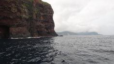 潮目ブログ  201407 島根県・隠岐の島「絶壁」