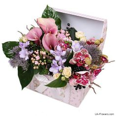 Great Absolutely Free Exotic Flowers composition Popular Area plants as well as plants can be quite a excellent accessory for any business office and also kitchen tab Unusual Flowers, Beautiful Flowers, Every Rose, Rose Arrangements, Order Flowers, Spray Roses, Delphinium, Exotic Plants, Flower Boxes