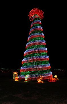 10 of the worlds best christmas trees trees christmas trees garvan woodland gardens just one of many christmas light displays this is a sciox Image collections
