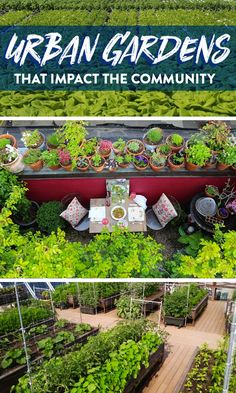 6 inspiring urban gardens that impact the community Terrace Garden, Garden Spaces, Organic Gardening, Urban Gardening, Vintage Gardening, Gardening Hacks, Gardening Tools, Gardening Gloves, Vegetable Gardening