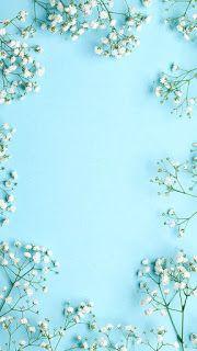 65 Super Ideas For Wallpaper Fofos Branco E Azul - Wallpaper Quotes Floral Wallpaper Desktop, Wallpaper Für Desktop, Flowers Wallpaper, Trendy Wallpaper, Wallpaper Backgrounds, Iphone Backgrounds, Bedroom Wallpaper, Wallpaper Samsung, Baby Wallpaper