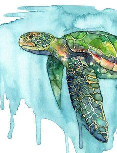 accrocher la plage de tortue X11 au PC sites de rencontre turque au Royaume-Uni