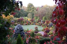 First autumn frost at English garden for all seasons. Lovely & Beautiful!
