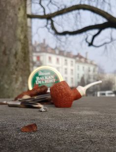 Pemal Chhedda Buckeye pipe   #pipe#tobacco#smokingthepipe#briarbroom#tasteoftobacco#buckeye#balkandelight#peterson#collectingpipes#tobaccotins#conkertree#outside#pipecommunity#winterwithoutsnow#freeze#