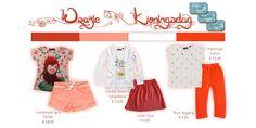 koningsdag  - fourseasonsshop.nl - Four Seasons Shop Four Seasons, Flamingo, Coral, Long Sleeve, T Shirt, Shopping, Fashion, Flamingo Bird, Supreme T Shirt
