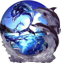 dolphin animated glitter graphics | Animations A2Z - animated gifs of crystal balls