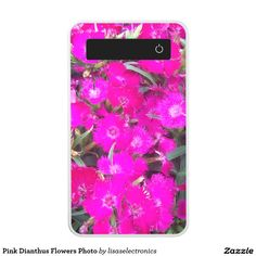 Pink Dianthus Flowers Photo Power Bank