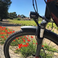 Instagram picutre by @varouestebike: C'est le printemps #veloelectrique #leveloplaisir #varouestebike #bikerental #lacadieredazur #provence #cotedazur #ebike #vae - Shop E-Bikes at ElectricBikeCity.com (Use coupon PINTEREST for 10% off!)