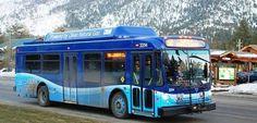 blue go South Lake Tahoe, Blue, Saving Tips